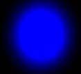 plavi div
